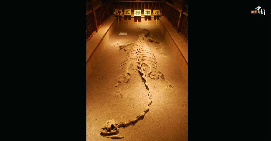 """禄丰,位于滇中彝州境内的一片神奇土地。在面积四百多平方公里的禄丰盆地中,沉积着厚达三、四千米的碎屑岩层。一亿六千万年前的中生代侏罗纪时期,主宰这片""""红层""""的是繁盛的恐龙王朝。摄影:李建华"""