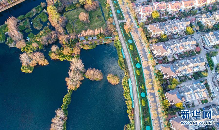 这是1月20日无人机拍摄的滇池和周边湿地。 2018年,昆明市共实施了67个滇池保护治理项目,滇池治理完成投资23.4亿元,滇池全湖水质上升至IV类,为30余年来最好水质。记者  蔺以光  胡超