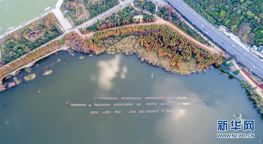 这是1月20日无人机拍摄的滇池。 2018年,昆明市共实施了67个滇池保护治理项目,滇池治理完成投资23.4亿元,滇池全湖水质上升至IV类,为30余年来最好水质。