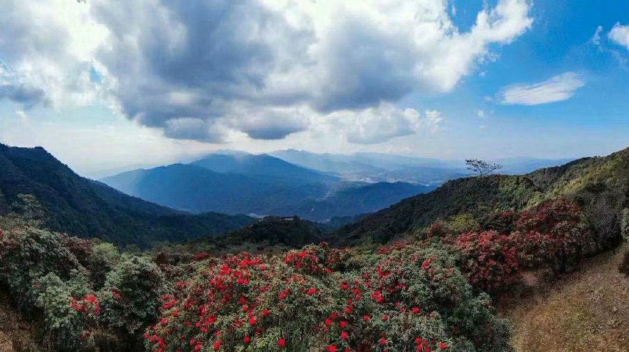 勐蚌村隶属保山市腾冲市中和镇,位于海拔约1964米的多山地区,地处中和镇西面,距镇政府所在地25公里,距县城30公里。由于过去的勐蚌村交通不便,村庄闭塞,使得勐蚌村得天独厚的自然资源得以完整保留。因此勐蚌村的水是绿的,山也是青的,这里风景秀丽,环境宜人,是个天然氧吧!(通讯员潘娇娇 詹朋)