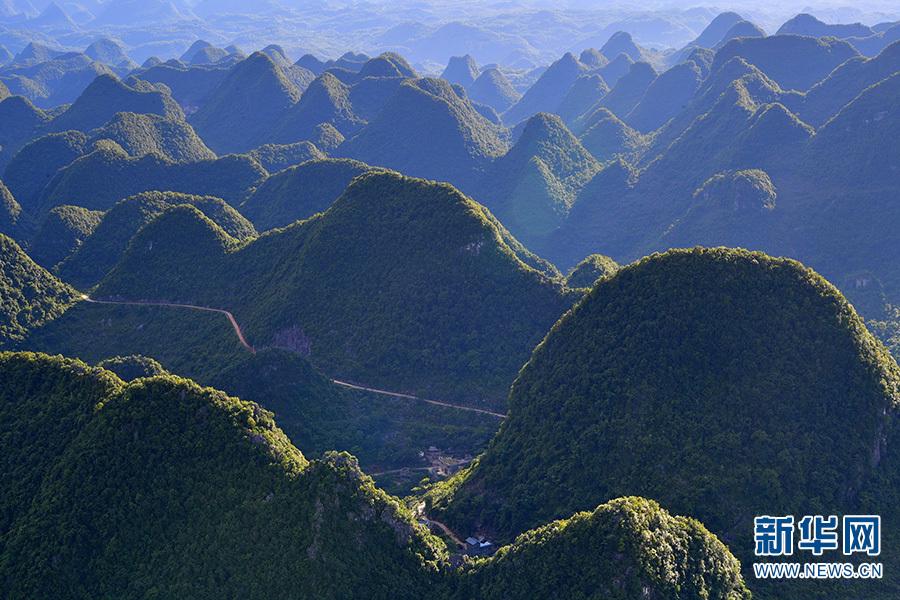 6月11日拍摄的罗平县喀斯特峰林景观。新华网发(毛虹 摄)