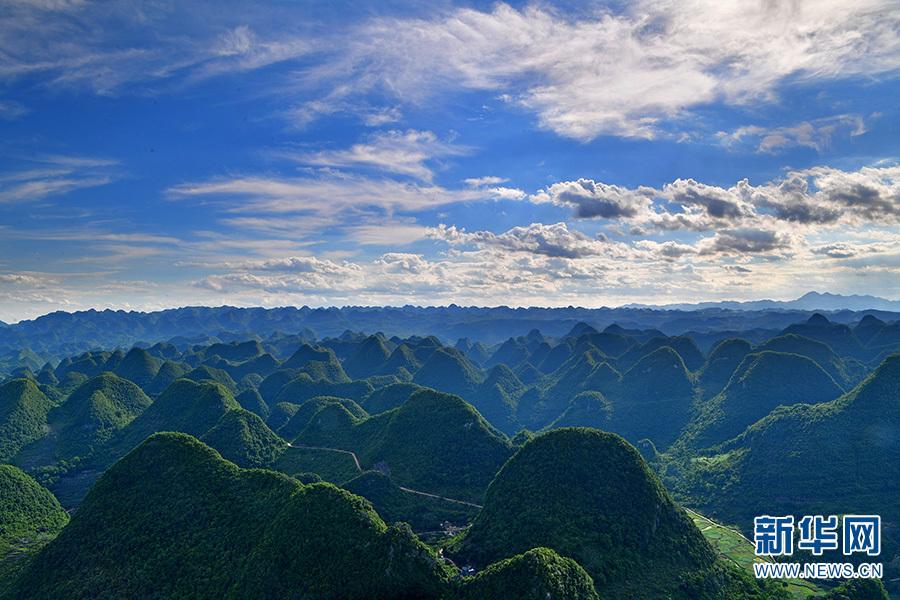 近期,云南罗平县数百平方公里的喀斯特峰林进入最佳观赏季节。层层叠叠的峰林如万马奔腾,气势恢宏,美不胜收。图为6月11日拍摄的罗平县喀斯特峰林景观。新华网发(毛虹 摄)