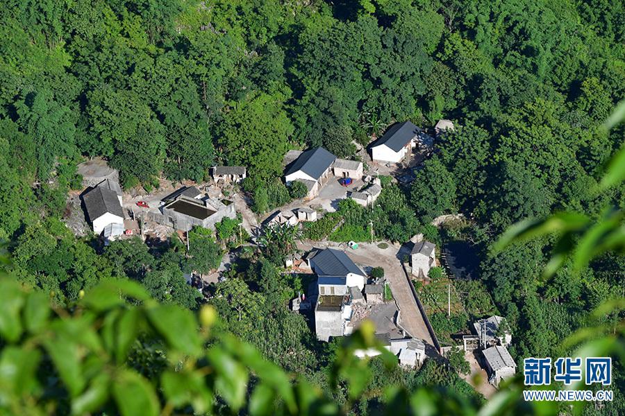 图为6月11日拍摄的掩映在峰林深处的村子。新华网发(毛虹 摄)