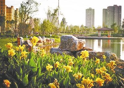宣威市地景公园。赵璠 摄