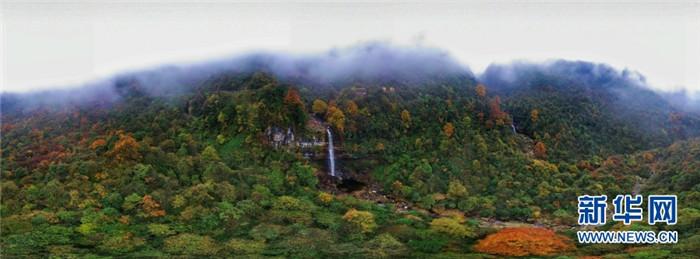 小草坝迎客瀑布全景。新华网发(左滨洪 摄)
