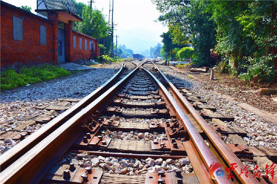 """如今的巡检司火车站,已被列为""""弥勒市文物保护单位"""",尽管已无任何列车经过,没有了热闹的街天,但锈迹斑驳的铁路仍然一直还在那儿延伸。正在从铁路上过往的村民李家兴说:""""我每次从车站经过,都小心翼翼,生怕损坏这里的一切。车站曾给我们带来繁华和希望,让我的女儿走出巡检,到大城市上大学,并在沿海工作,我对车站内所有的一切都有着深厚的感情""""。图为由于长时间没有人光顾之后,在地上、墙上、废弃的铁轨旁,已长出许多杂草。"""