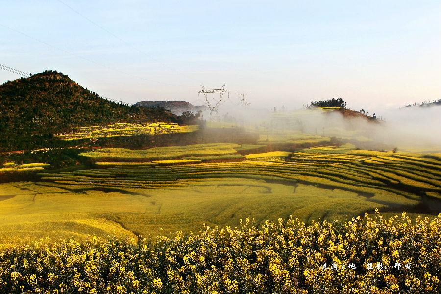 每年二三月间,油菜花盛开,罗平被国内外游客誉为地球上春天最美的地方。图为油菜花海。